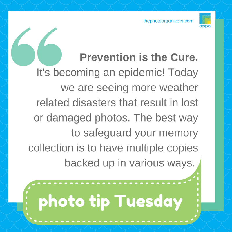 Photo Tip: Prevention is the cure. | ThePhotoOrganizers.com