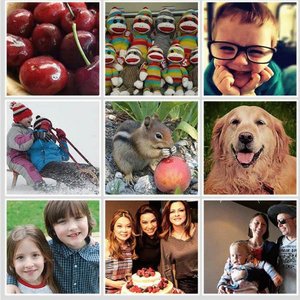 Photo Magnets - Fun & Unusual Photo Gifts for Under $50 | ThePhotoOrganizers.com