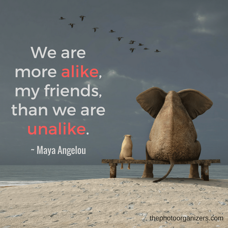 We are more alike, my friends, than we are unalike. ~ Maya Angelou | ThePhotoOrganizers.com