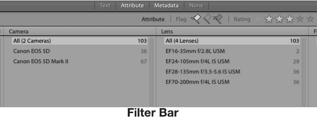 Adobe Lightroom Basics for Photo Organizing