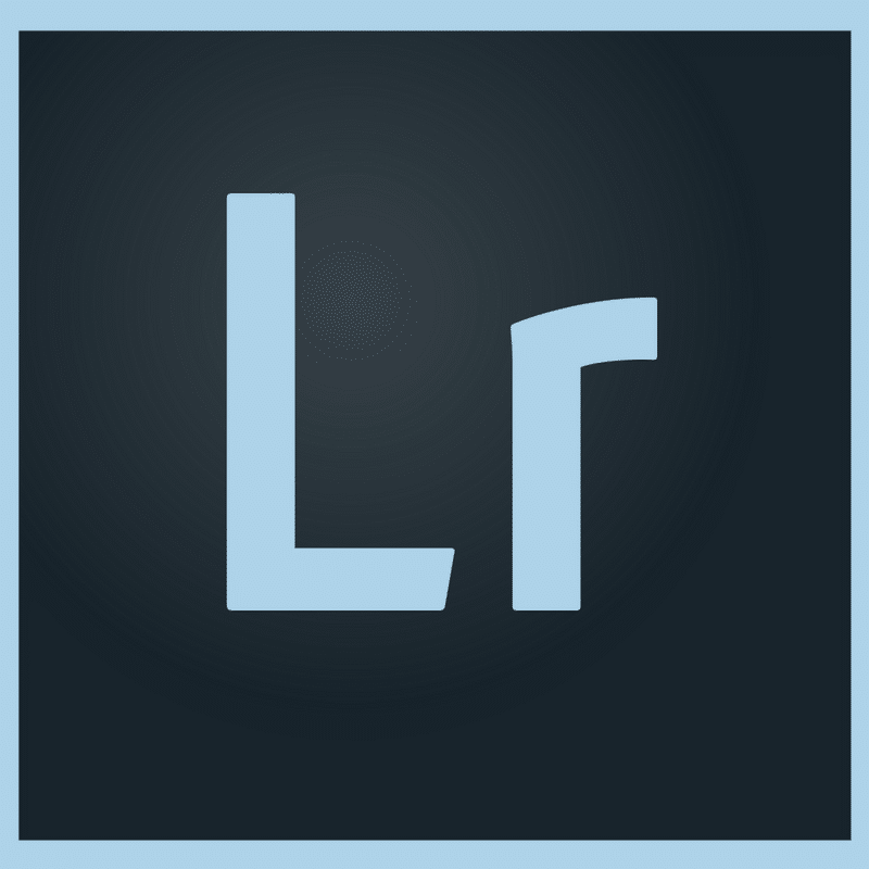Adobe Lightroom Basics for Photo Organizing | ThePhotoOrganizers.com