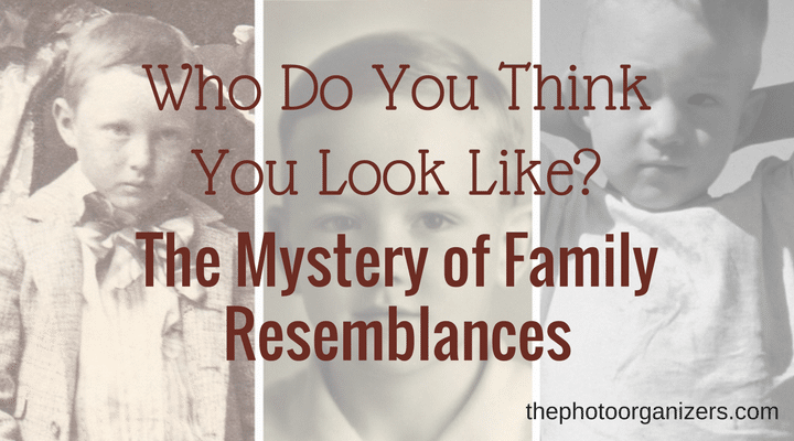 Who Do Think You Look Like? The Mystery of Family Resemblances | ThePhotoOrganizers.com