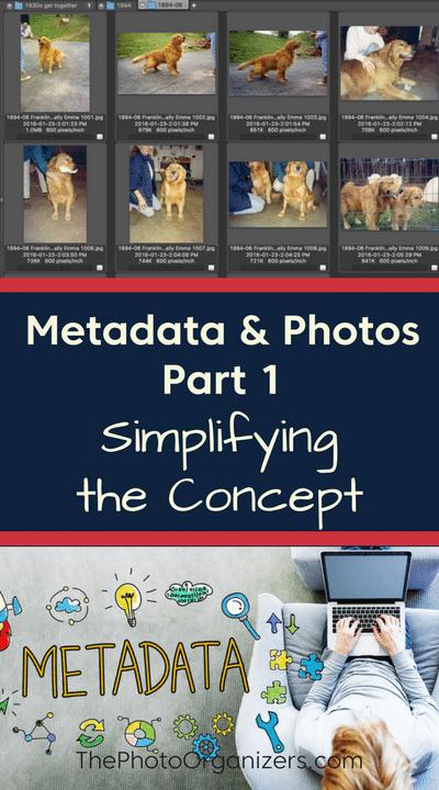 Metadata & Photos Part 1: Simplifying the Concept   ThePhotoOrganizers.com