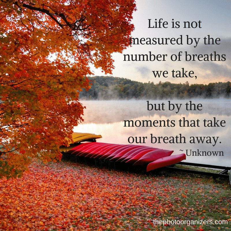 Life is not measured by the number of breaths we take, but by the moments that take our breath away. ~ Unknown | Quotes about Memories | ThePhotoOrganizers.com